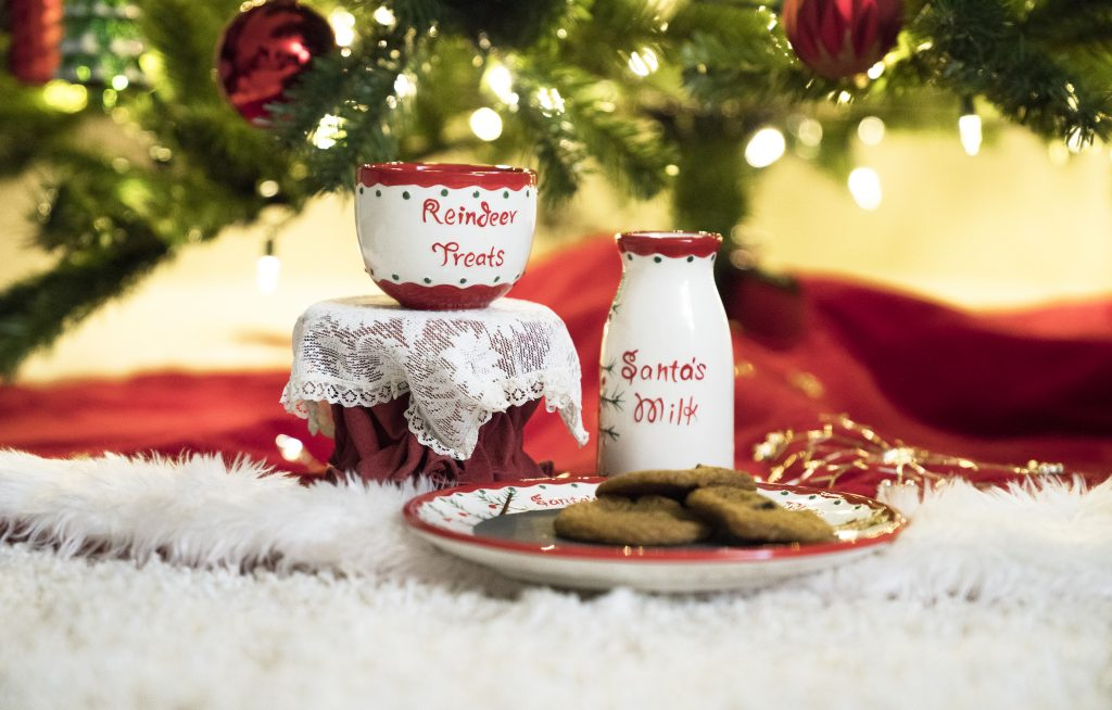 santa milk and cookies plate set
